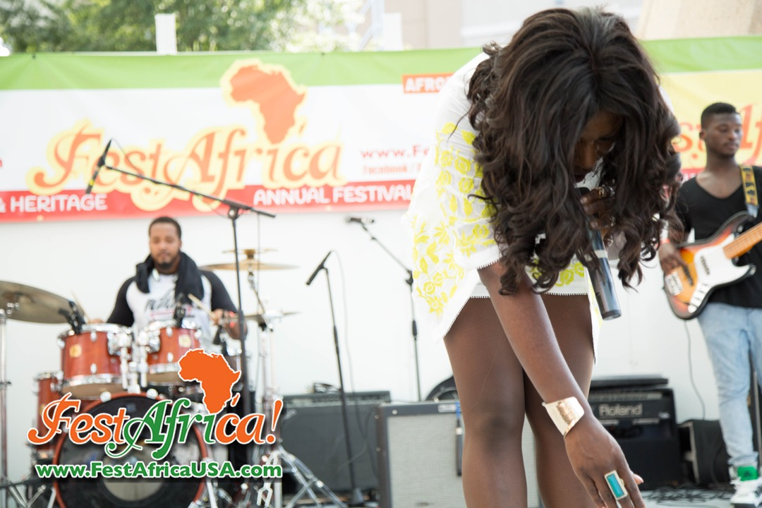 FestAfrica 2015 AYA African Festival Silver Spring Maryland USA Afropolitan Youth – Saturday – 20 of 66