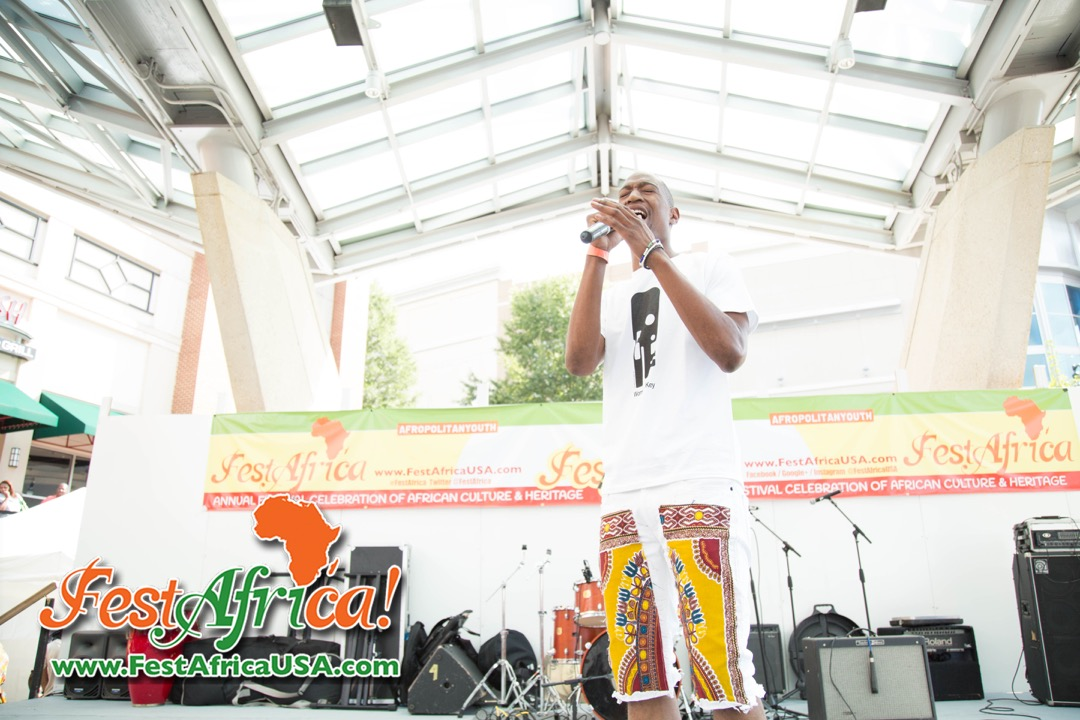 FestAfrica 2015 AYA African Festival Silver Spring Maryland USA Afropolitan Youth – Saturday – 25 of 66
