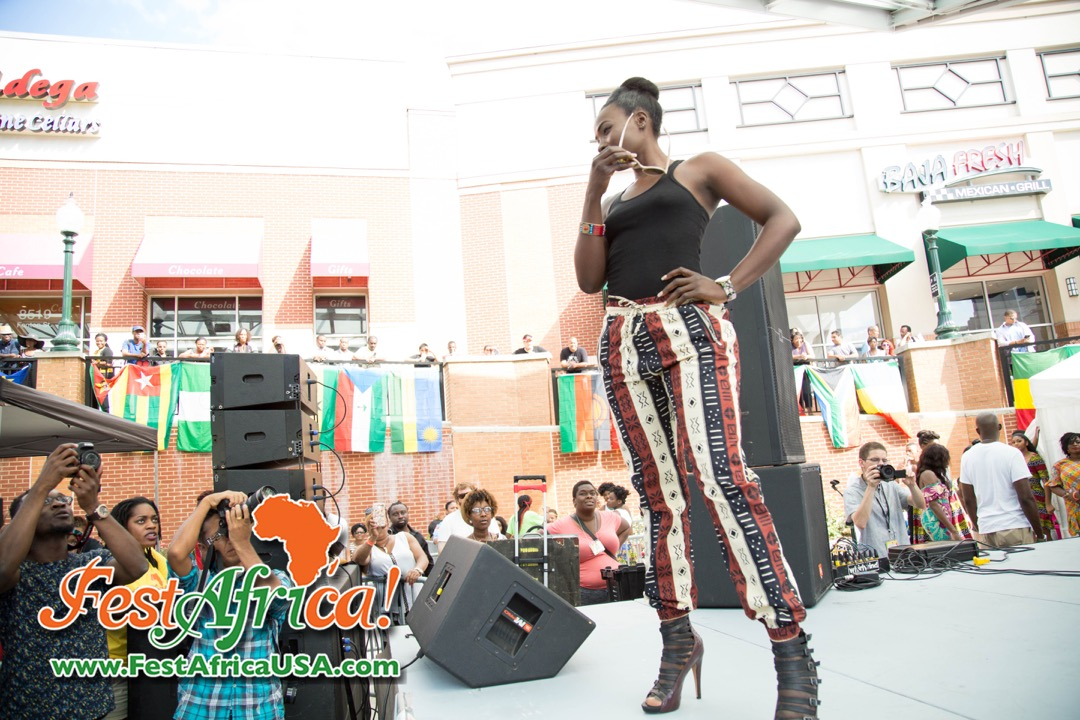 FestAfrica 2015 AYA African Festival Silver Spring Maryland USA Afropolitan Youth – Saturday – 34 of 66