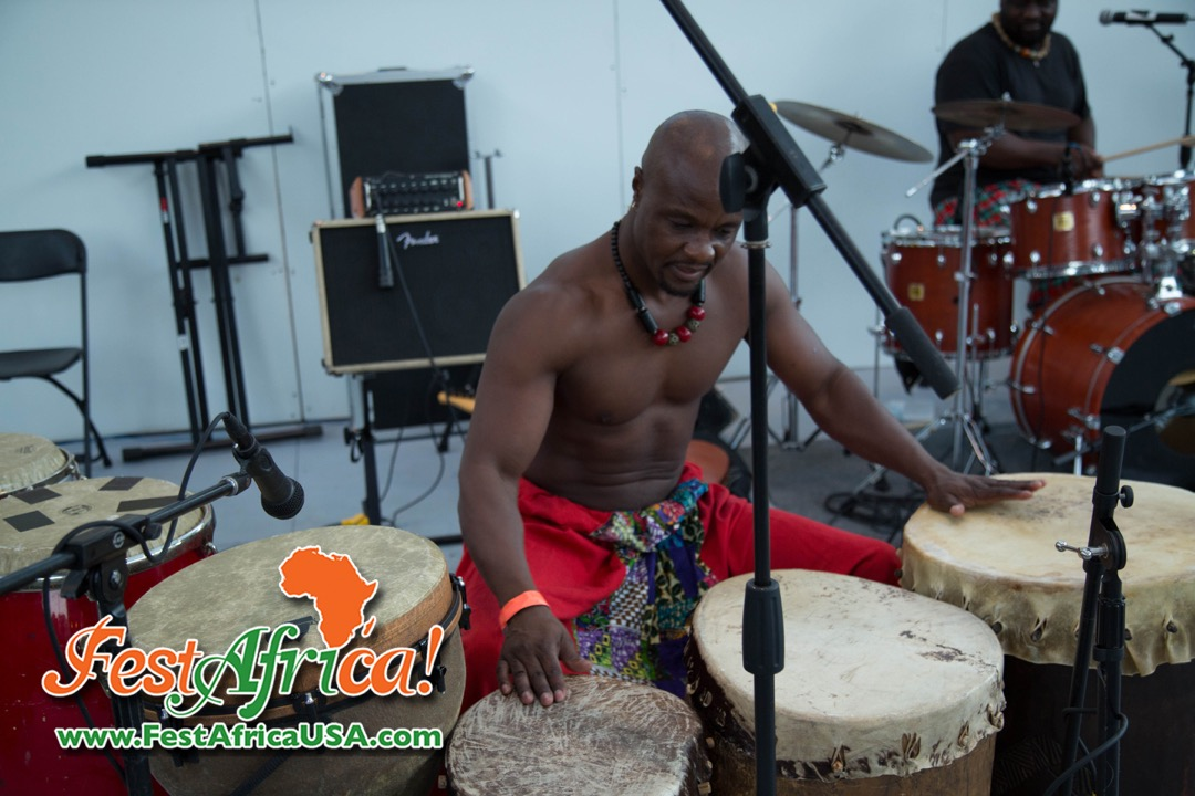 FestAfrica 2015 AYA African Festival Silver Spring Maryland USA Afropolitan Youth – Saturday – 62 of 66