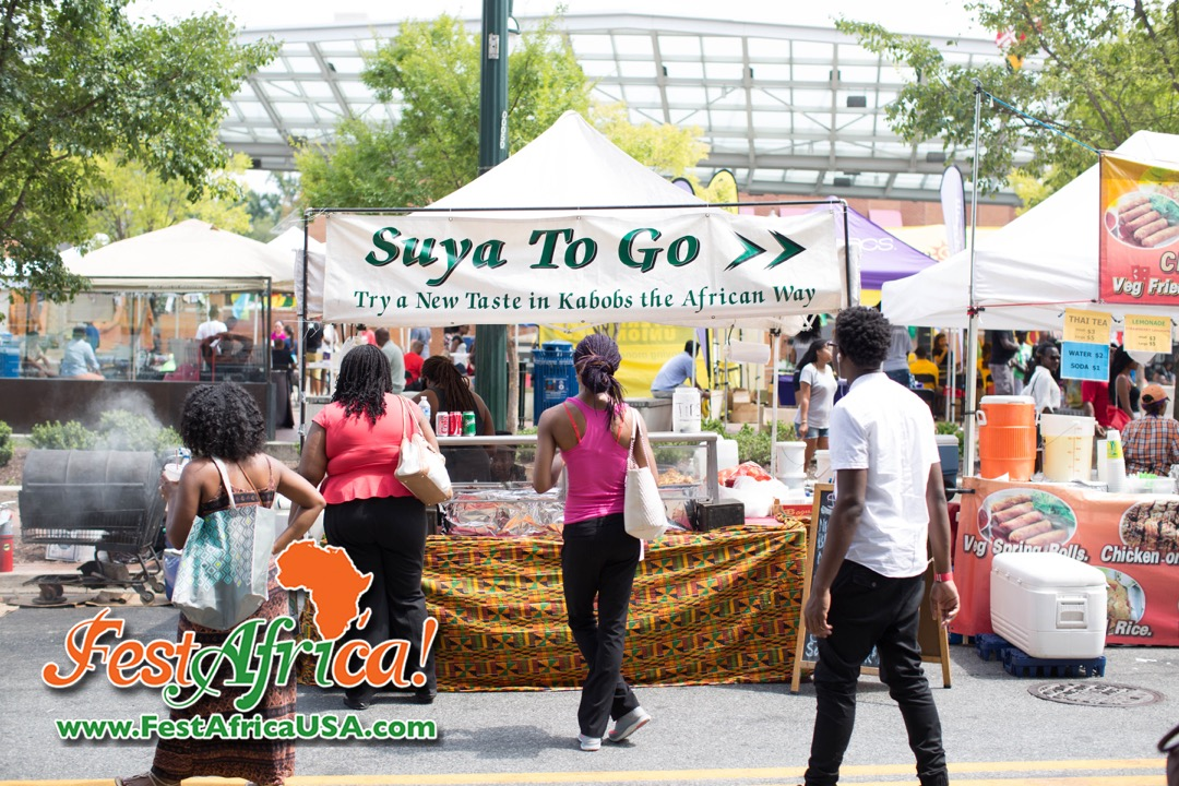 FestAfrica 2015 AYA African Festival Silver Spring Maryland USA Afropolitan Youth – Sunday – 5 of 106